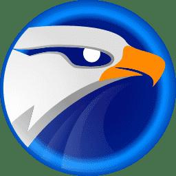 eagle get idm downloader